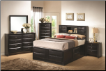 Briana Queen Contemporary Storage Bedroom