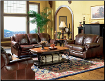 Princeton Leather Living Room Set (SKU: CO 500661-LR-SET)