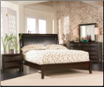 Phoenix Dark Cappuccino Platform Bed Set - Coaster (SKU: CO- 200410-KSET)
