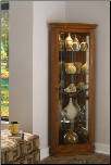 Salerno - Curio By Pulaski Furniture (SKU: PLS-21000)