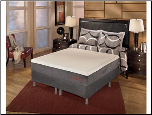 "M861 Leesport 10"" Memory Foam Mattress Set."