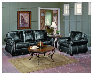 Traditonal Living Room Set in Dark Chocolate Leather, 'Scorpio' Collection by Homelegance.