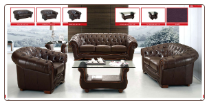 ESF  - Cassic Brown Leather Living Room Set